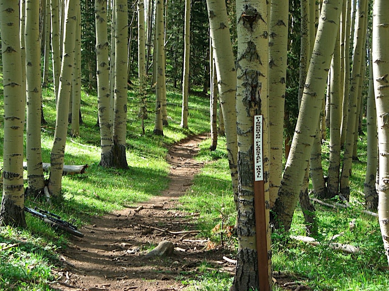 Guide: Finding Your Dream Trails